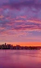 morning boat cruise sydney bucks